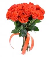 25_orange_rose_2375
